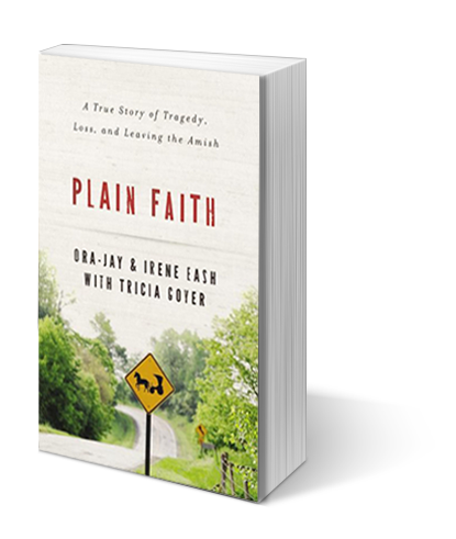 Plainfaith-3dcover-transparent